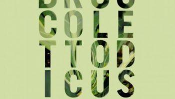 Festa del Broccoletto di Custoza