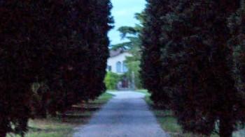 Villa Arvedi Emilei