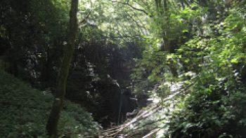 Valle dei Progni