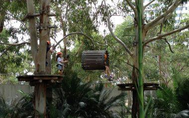 Jungle Adventure Parco San Zeno